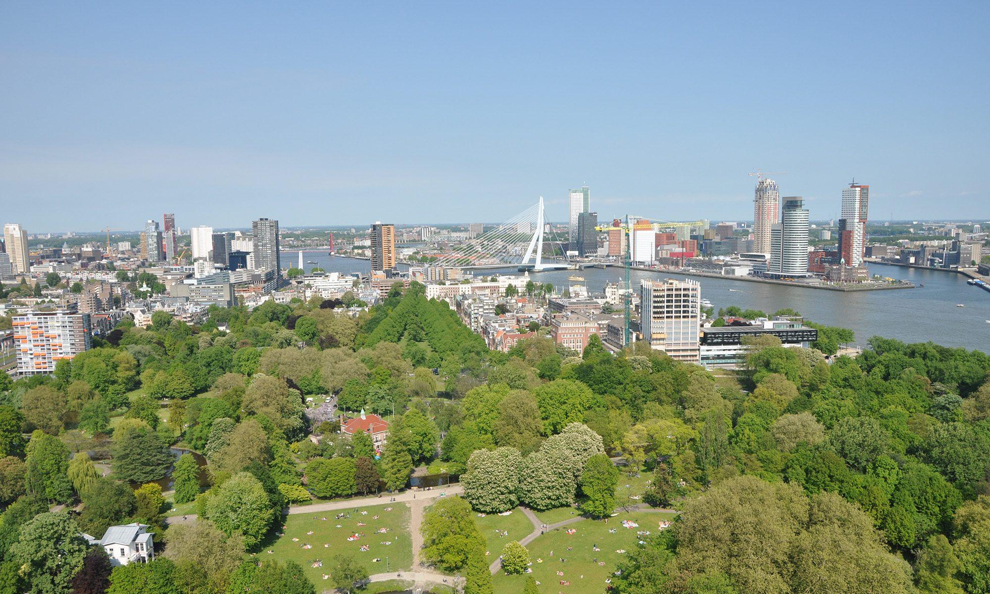 Rotterdam bevalt